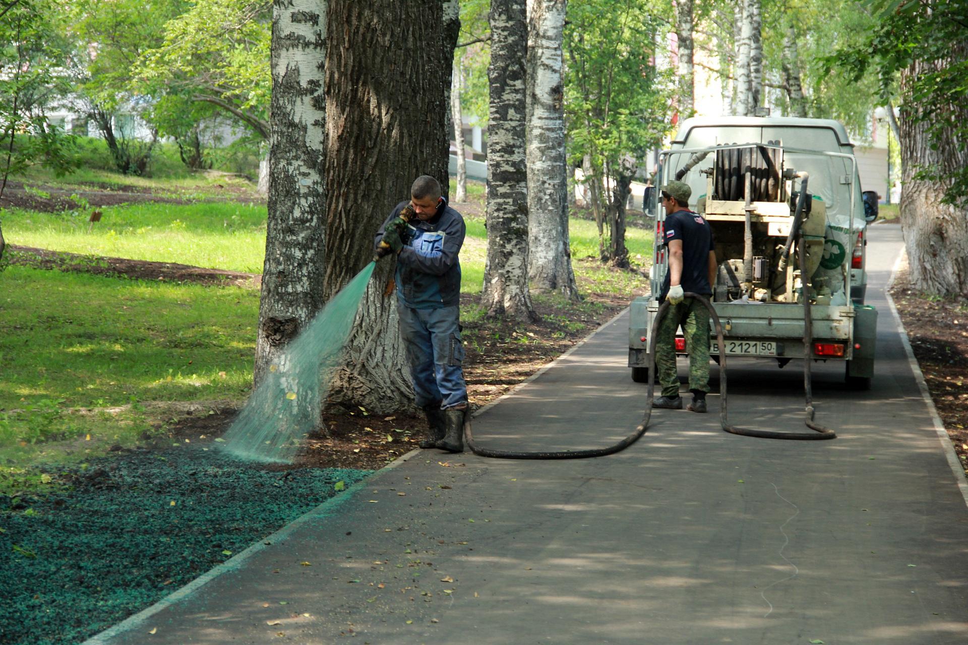 В Кировском парке Сыктывкара используют эффективную технологию выращивания газона