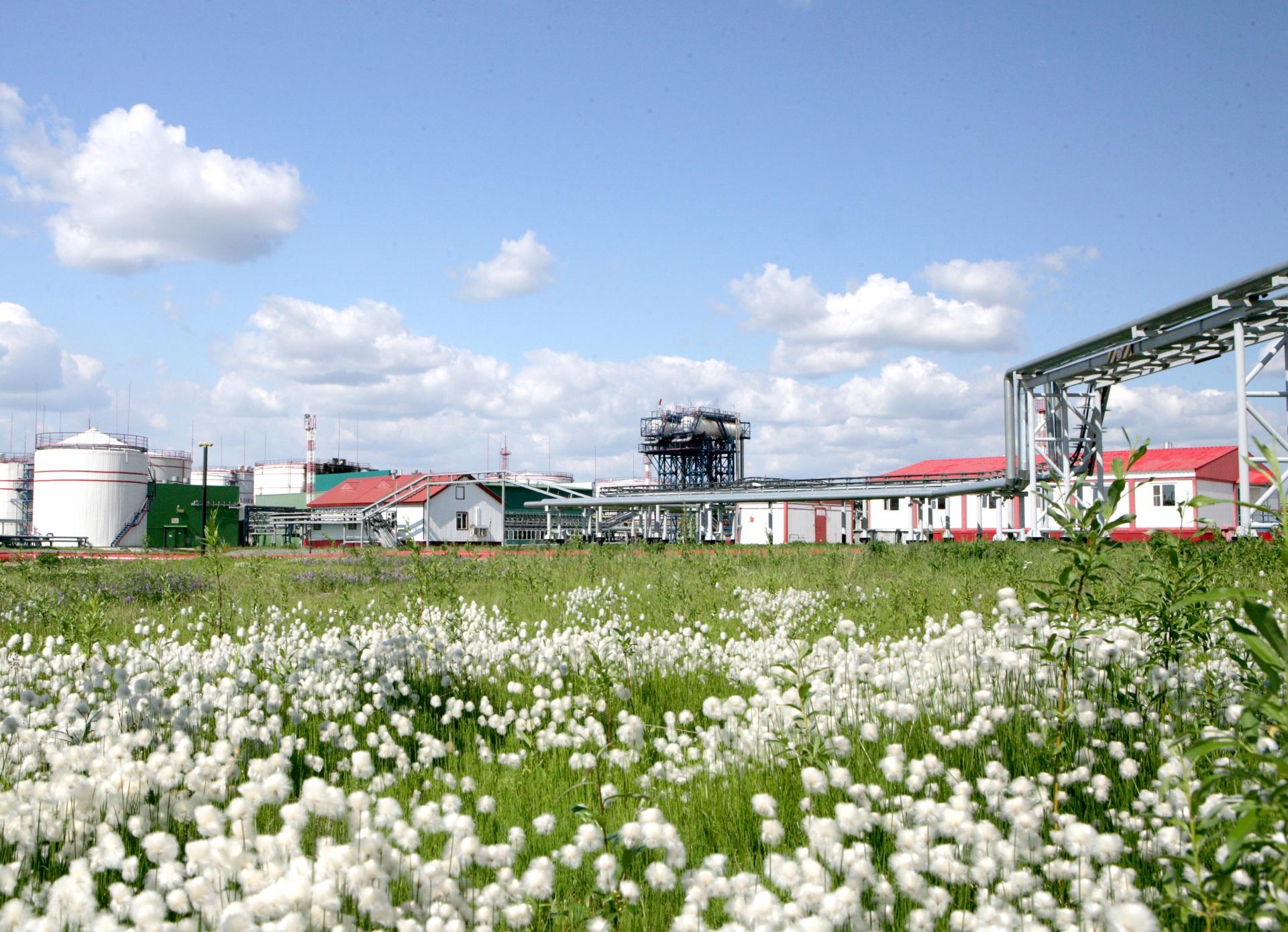 В ЛУКОЙЛ-Коми открыта прямая линия по вопросам экологической безопасности