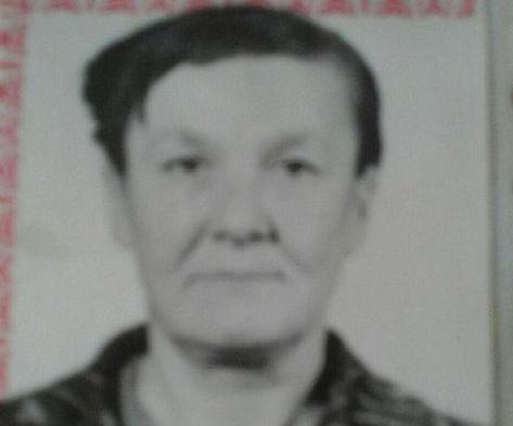 К поискам без вести пропавшей жительницы Койгородка подключились спасатели