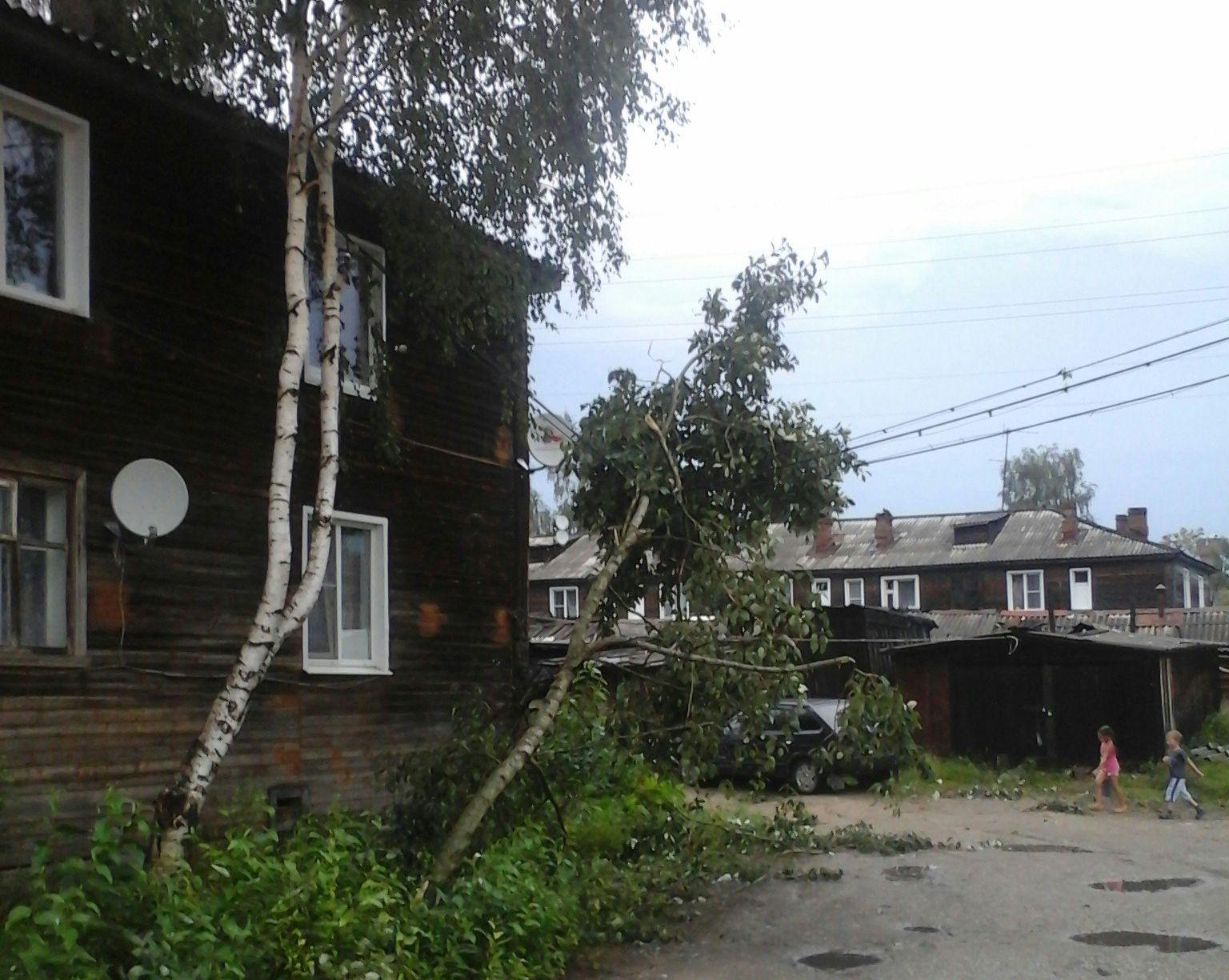 Ураган в Коми повредил крыши и вырвал деревья с корнем