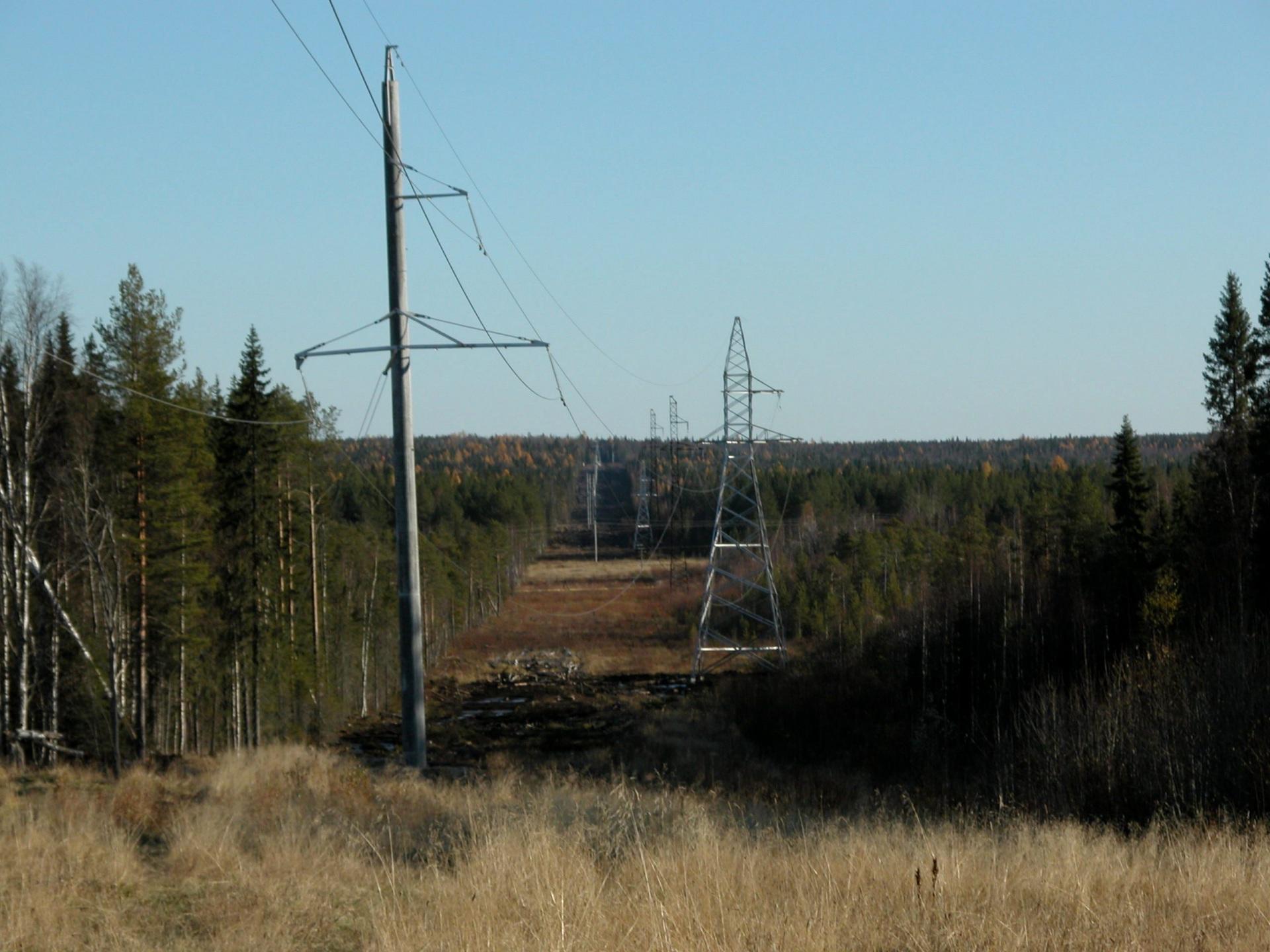 В Койгородском районе восстанавливают электроснабжение после утренней грозы