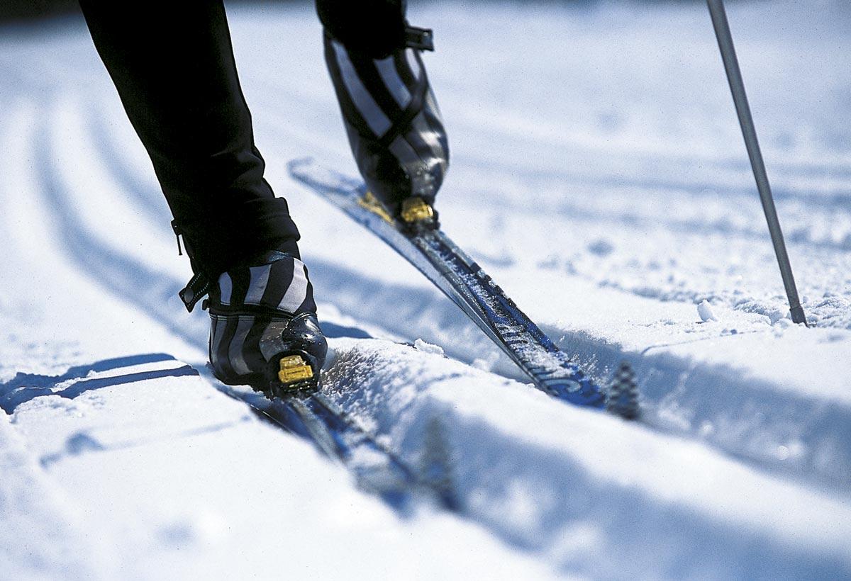 Сергей Гапликов дал старт чемпионату МВД по лыжным гонкам