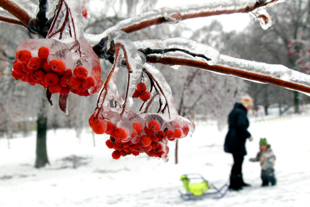 ЖК Летний сад на Дмитровском шоссе от ЭталонИнвест