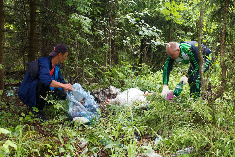 Население Коми будет экологически воспитанным
