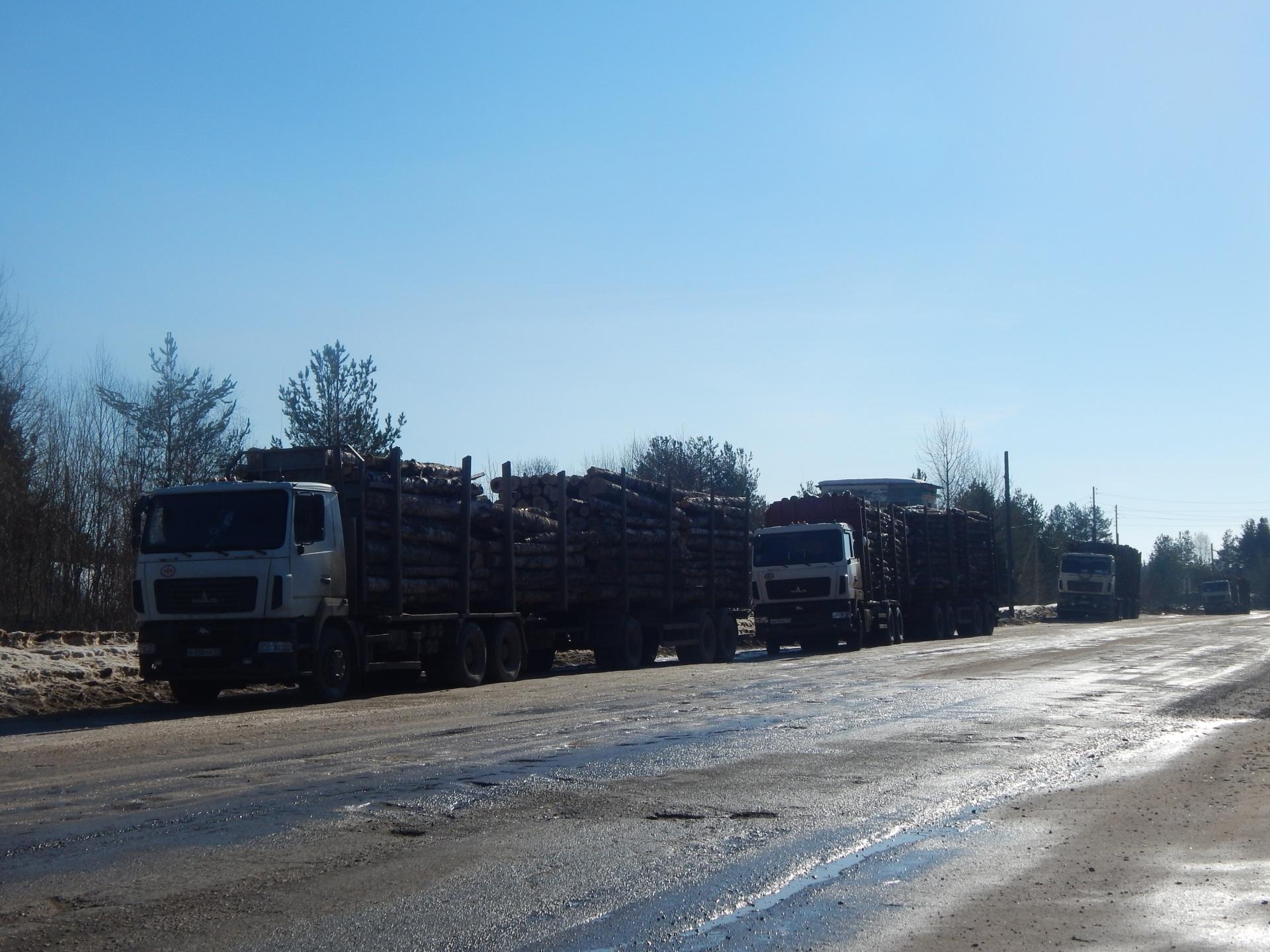 Владельцы большегрузов устроили на дорогах Коми настоящую вакханалию - Сергей Гапликов