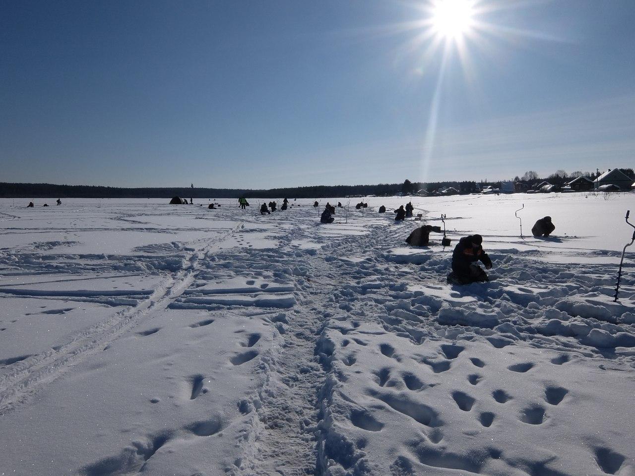 Лучшие рыболовы Коми поборолись за медали Чемпионата по подледному лову на мормышку