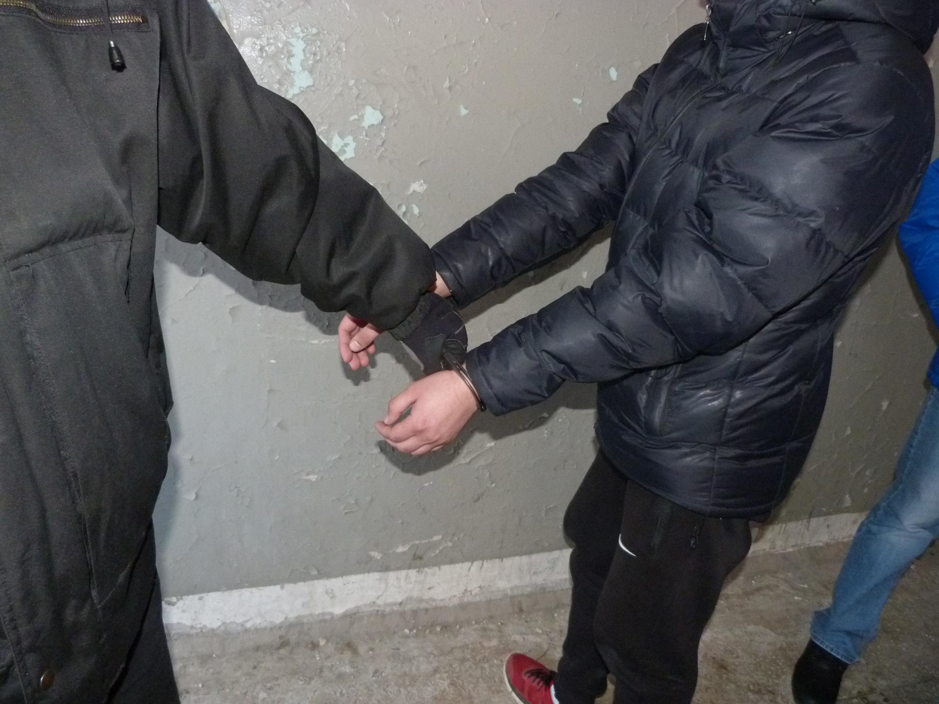 В марте 2016 года наркополицейские Коми задержали членов восьми преступных групп