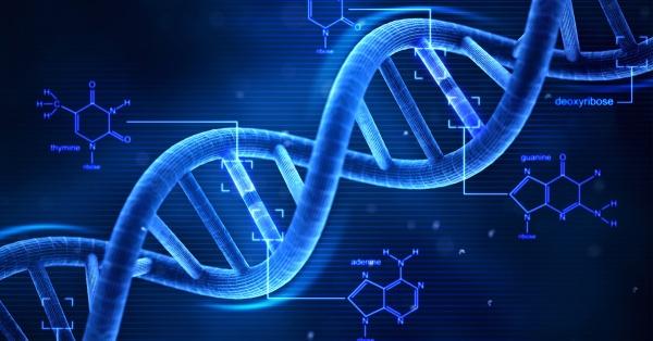 Вредны ли генномодифицированные продукты и возможно ли появление армии клонов
