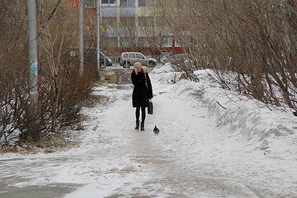 Подробная погода в москве на 7 дней от гидрометцентра