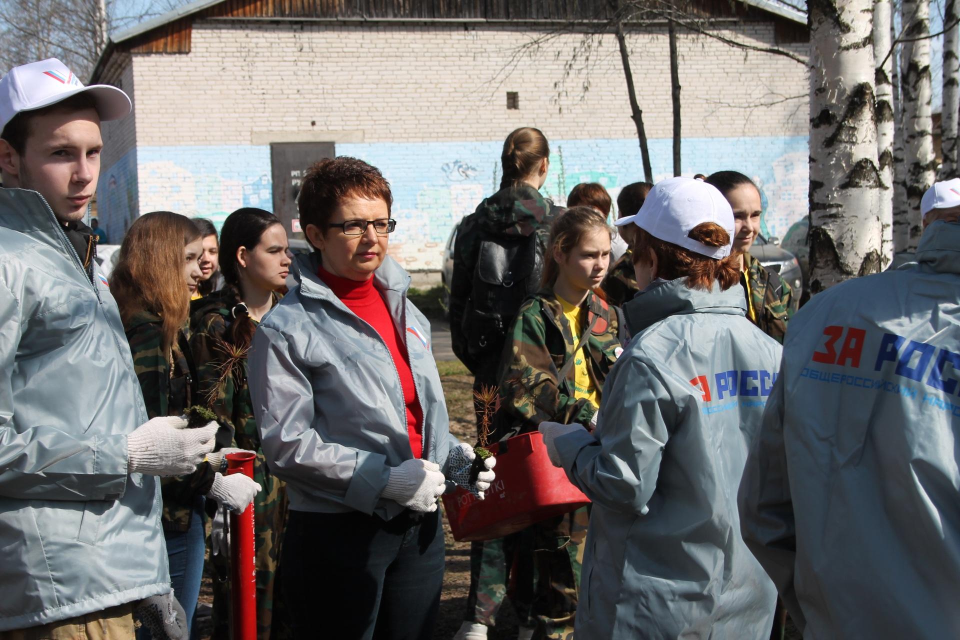 Активисты Народного фронта в Коми высадили сосновую аллею около Детской республиканской больницы