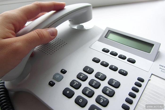 Телефон горячей линии по вопросам предварительного голосования