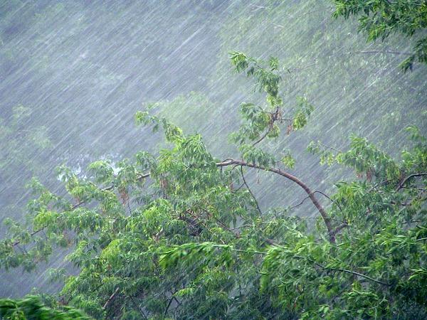 До 22 часов в Коми ожидаются грозы с сильными порывами ветра