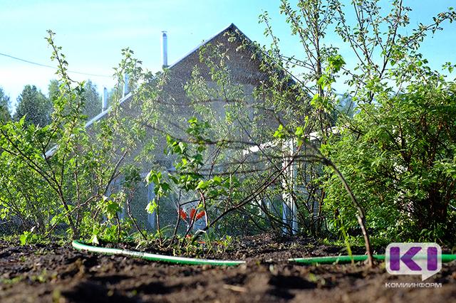 Коми нужна республиканская программа по оказанию финансовой поддержки садоводческим товариществам