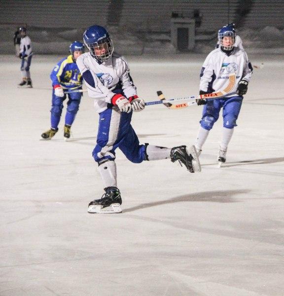 Сыктывкар примет юношеский чемпионат мира по хоккею с мячом