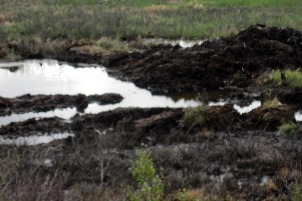 Глава Коми Сергей Гапликов взял на личный контроль ход ликвидации последствий порыва нефтепровода под Усинском