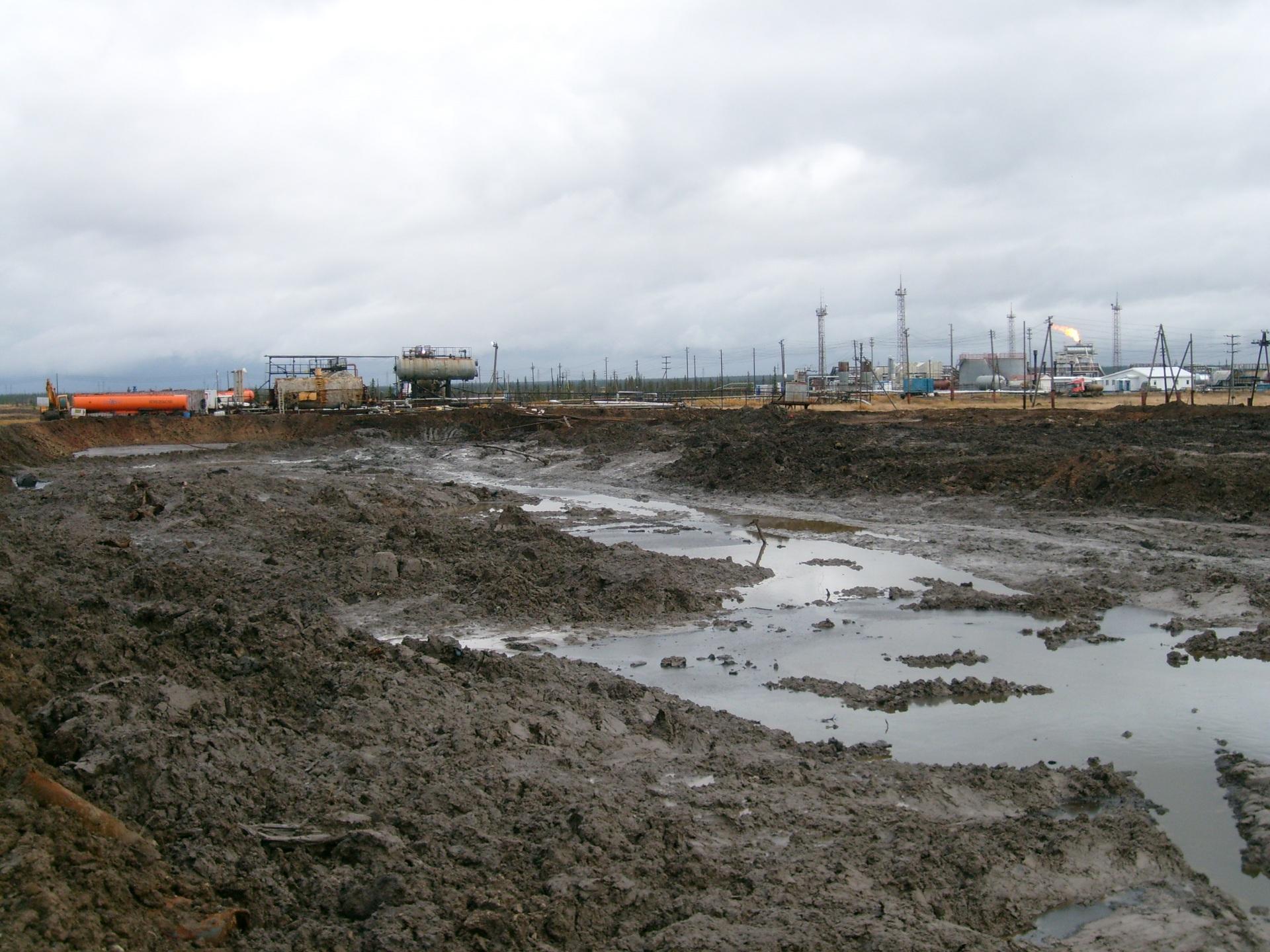 Последствия прошлогоднего нефтеразлива на Южно-Ошском нефтяном месторождении ликвидированы