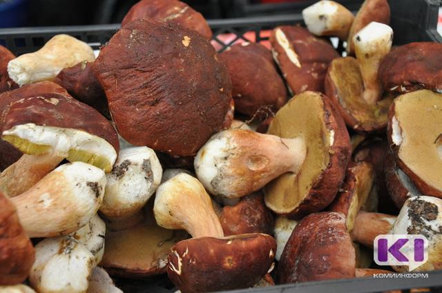 Сыктывкарка присвоила деньги работодателя, принимая от населения грибы и ягоды