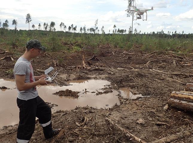 Лесозаготовители из Монди СЛПК прошли обучение на полевых курсах по вопросам лесопользования