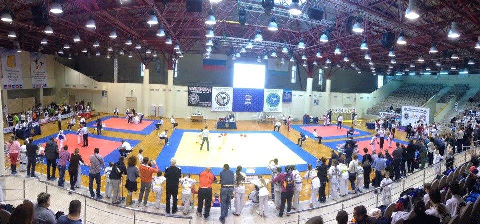 Спортсмены из Коми отстаивают честь региона на всероссийском турнире по тхэквондо Kirov Open