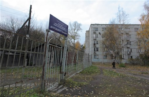 В сыктывкарском ботаническом саду появятся мемориальный комплекс и туалет