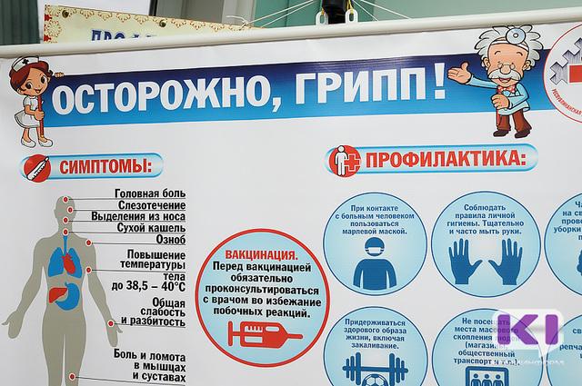Эпидемия гриппа ожидается в России в конце января 2017 года