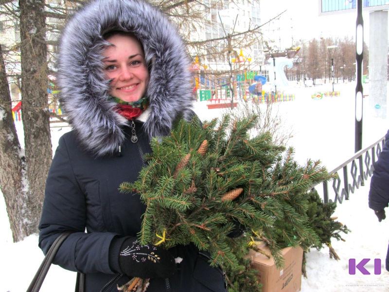 Десять елочных базаров откроются в Сыктывкаре