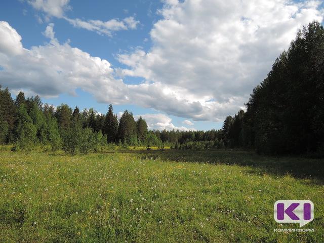 В Коми появится общественная экологическая инспекция