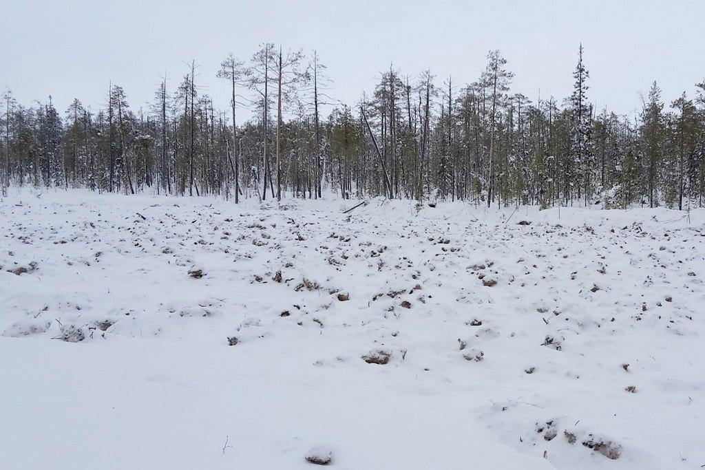 Последствия порывов нефтепровода в Печорском районе ликвидированы
