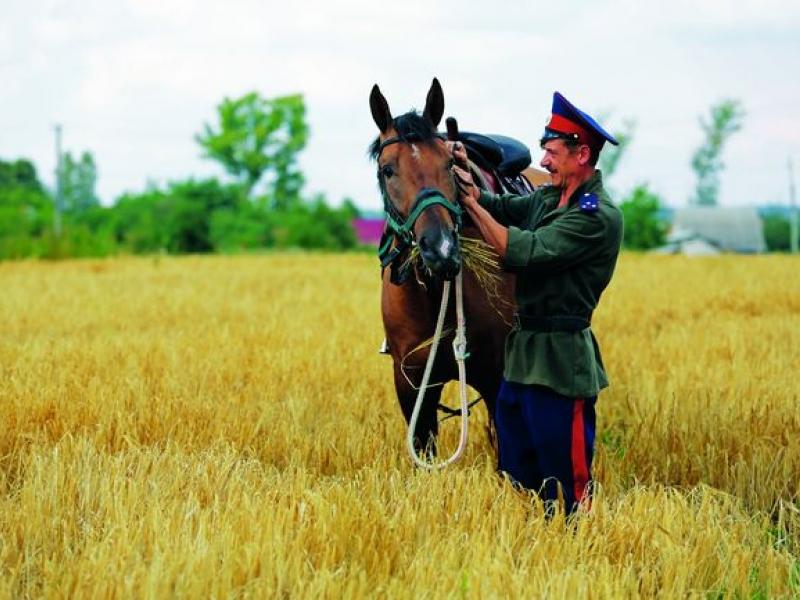 В Коми казаки смогут арендовать земли без торгов