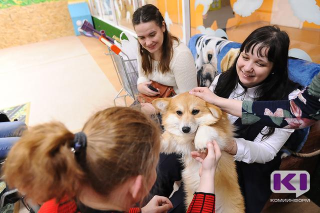 """Хаски, корги и овчарки подарили участникам проекта """"Мы рядом"""" тепло своих собачьих сердец"""