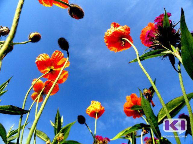 По прогнозу  синоптиков, в апреле температура в Коми будет ниже нормы, в июле в регион придет жара