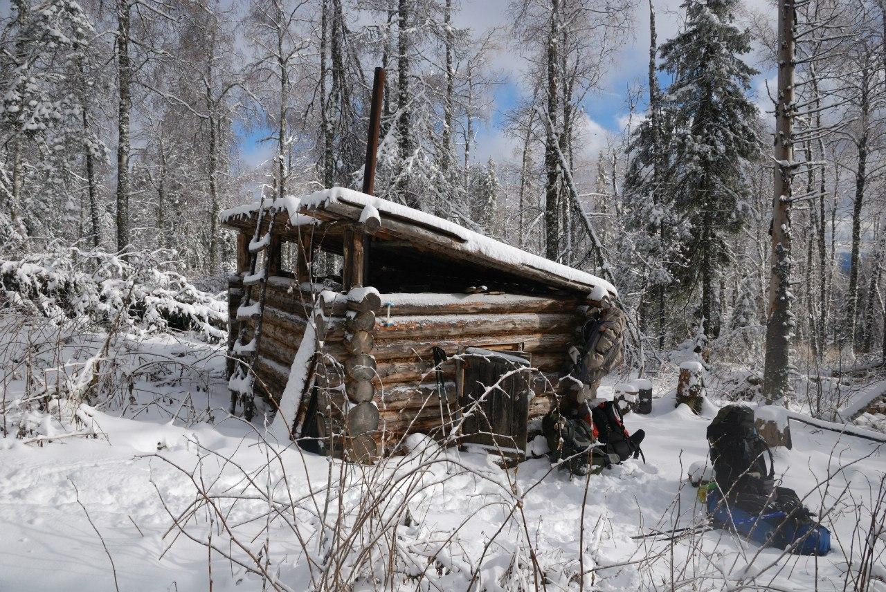 Пропавшего вКоми православного первосвященника отыскали мертвым влесу