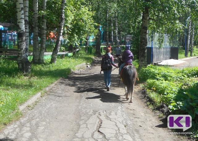 Проект благоустройства Мичуринского парка в Сыктывкаре оценили в 1,205 млн.руб