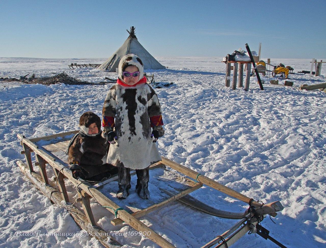 """Коми примет участие в реализации проекта """"Дети Арктики. Дошкольное образование"""""""