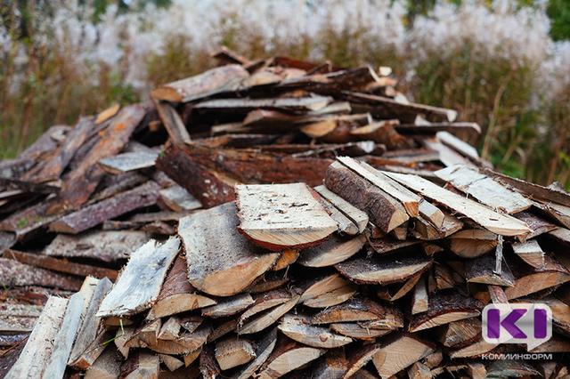 Руководитель союза лесопромышленников Коми предложил новые пути утилизации отходов лесопиления