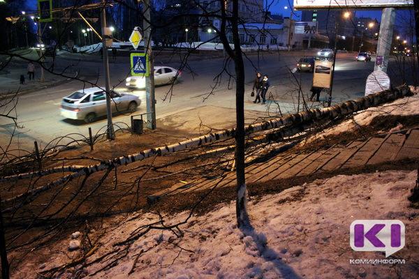 Порывы ветра в Сыктывкаре повалили рекламные конструкции и деревья
