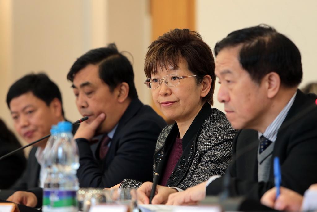 china_torf_3.JPG