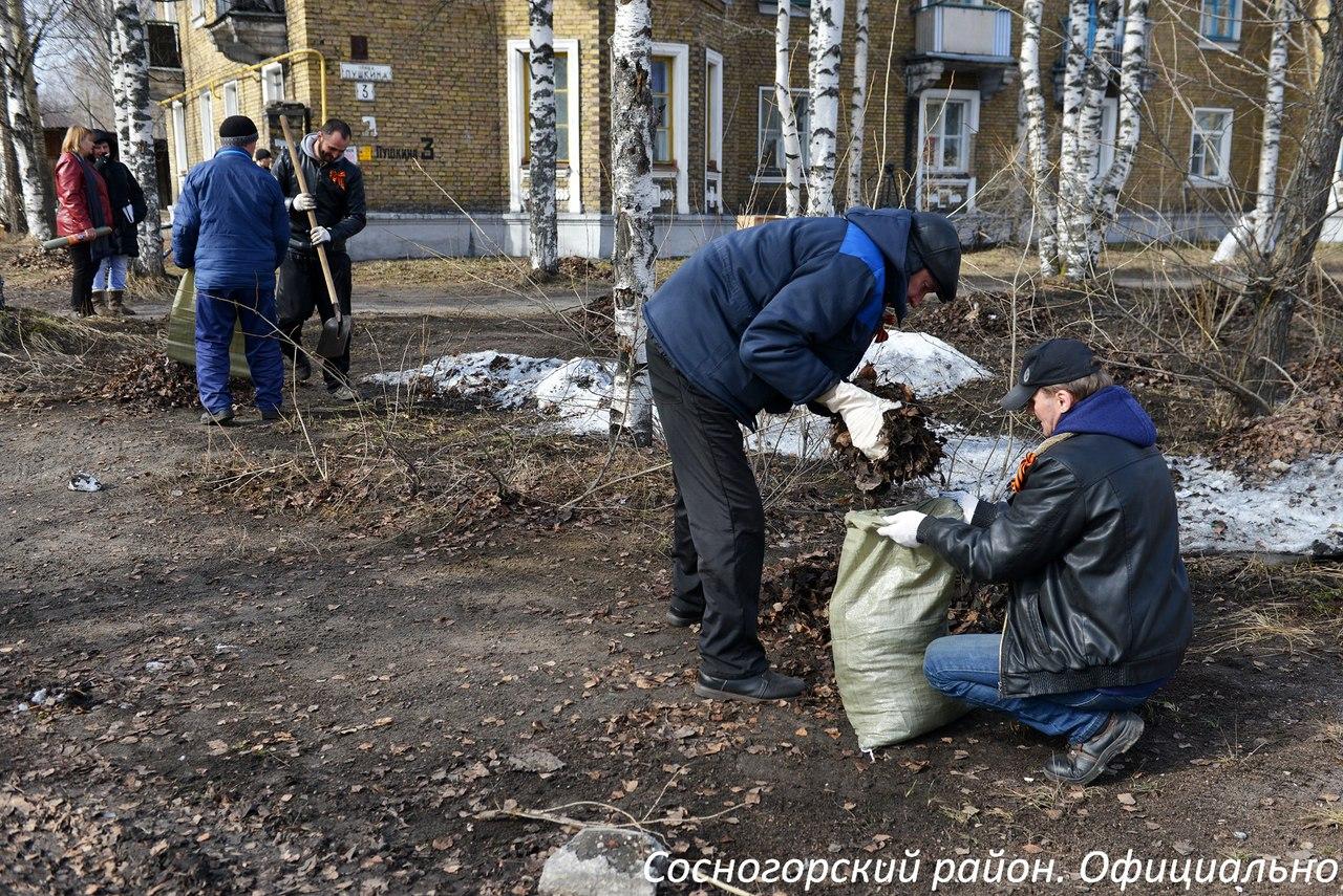 Жители Сосногорска принимают участие в субботниках