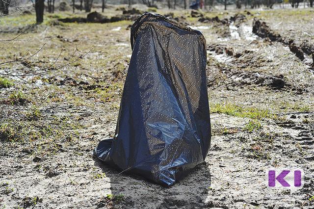Сыктывкарка нашла во дворе дома пакет с внутренними органами