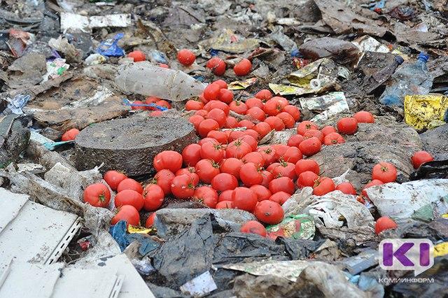 На сыктывкарском полигоне ТБО уничтожено почти 300 килограммов турецких томатов