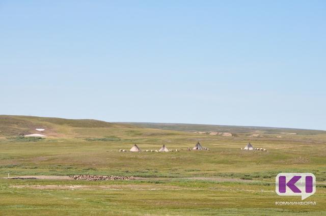 Оленеводы Воркуты поблагодарили Сергея Гапликова за участие в сохранении северного оленеводства