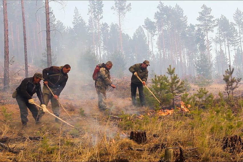 На территории Коми продолжают действовать 18 лесных пожаров