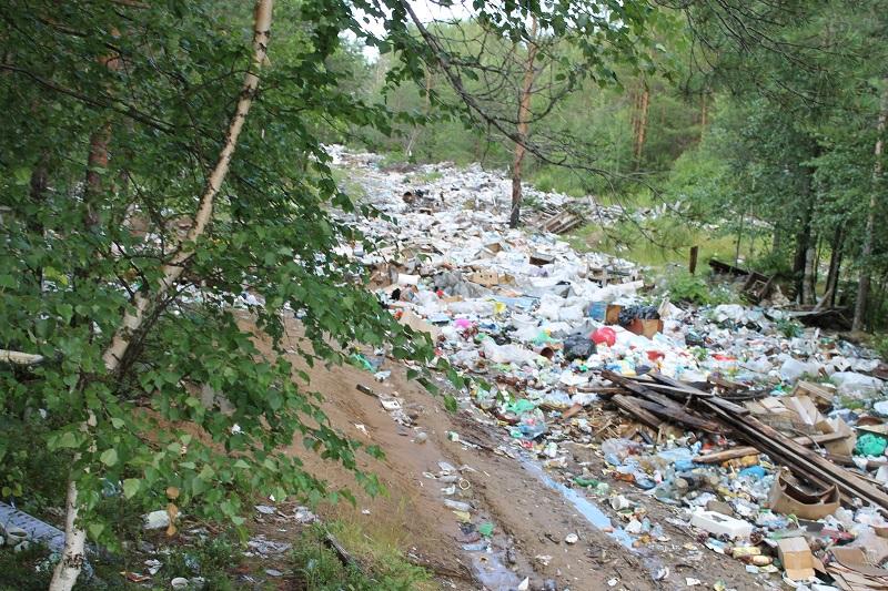 Активисты ОНФ в Коми обсудили проблему задержки строительства мусорных полигонов в Корткеросском районе