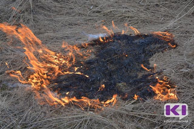 В Печоре и Усинске не все добровольцы явились на тушение лесных пожаров
