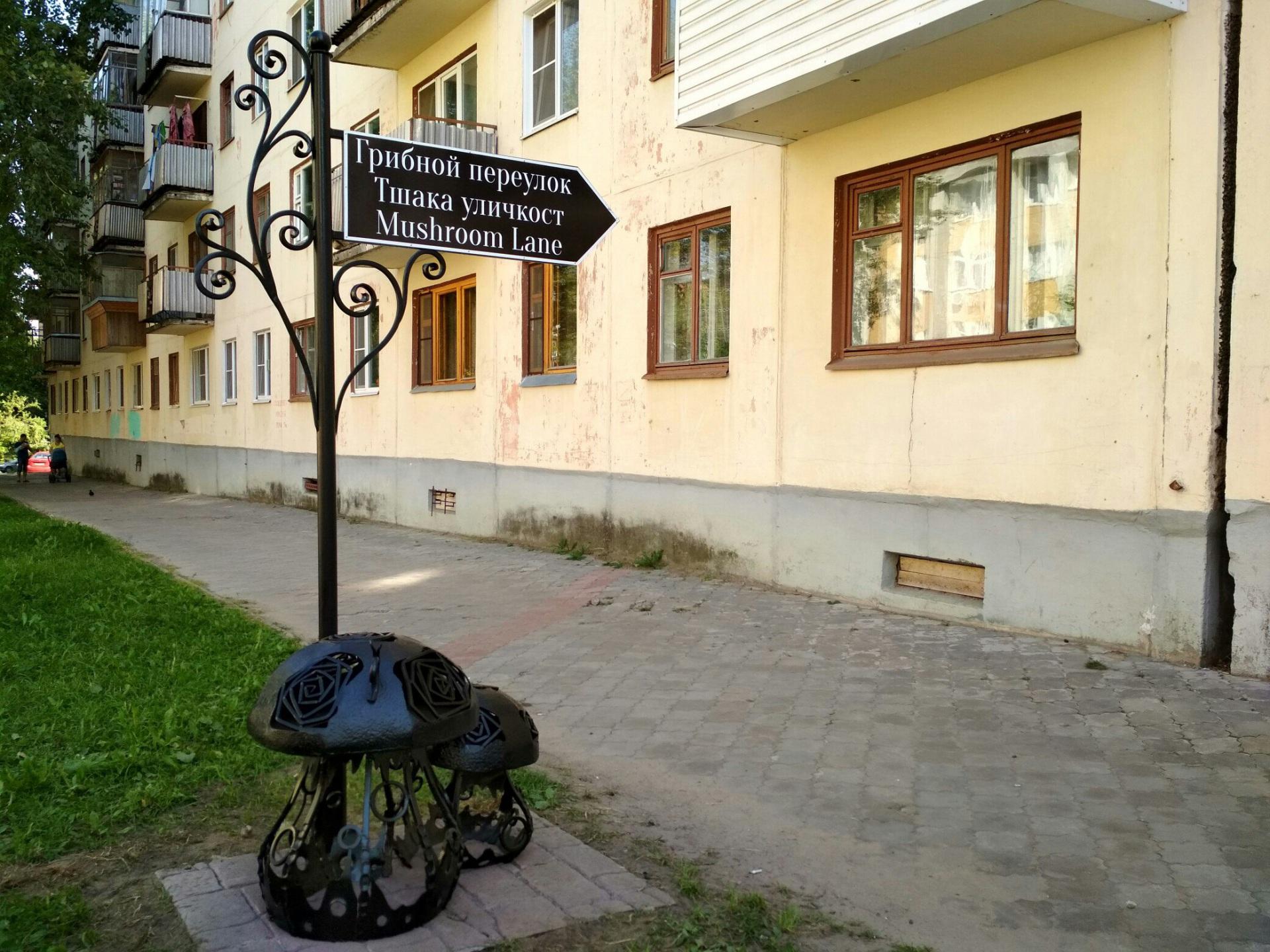 В Грибном переулке в Сыктывкаре