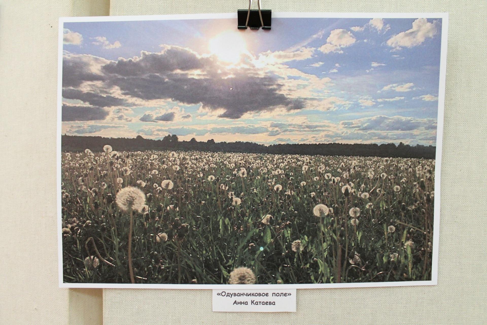 Сыктывдинский музей отметил Год экологии фотоконкурсом для жителей района