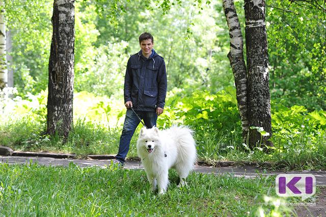 Площадка для выгула собак в Мичуринском парке Сыктывкара станет пилотной