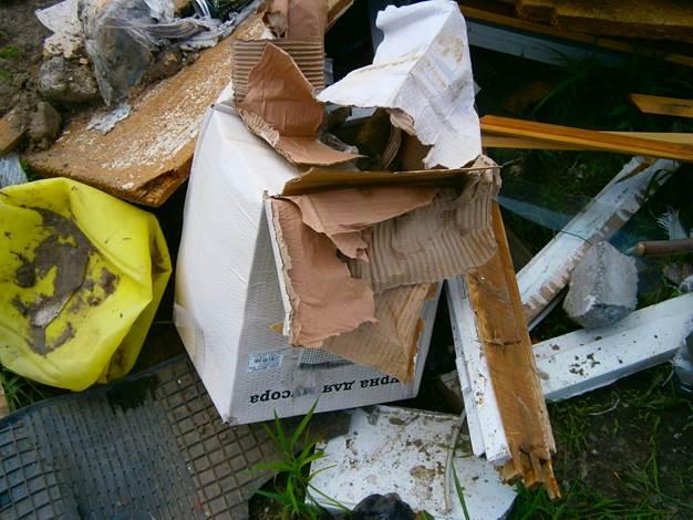 В Сыктывкаре наказали виновных за стихийную свалку возле ТЦ