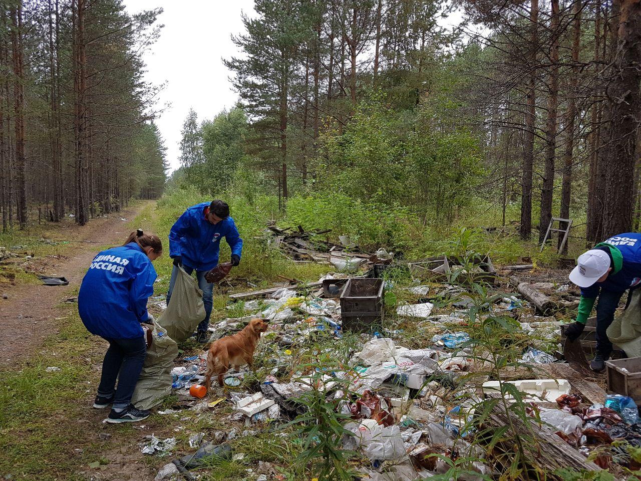 Единороссы собрали 243 мешка мусора в заказнике