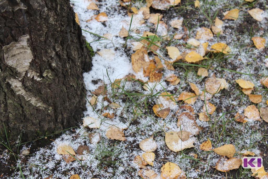 В Коми выпал первый снег